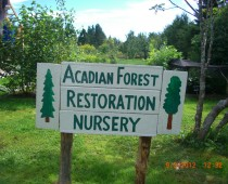 Analog forestry and permaculture workshop: Canada 2012