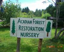 Taller de forestería análoga y permacultura: Canadá 2012