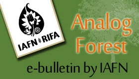 Boletín RIFA