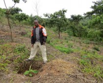 FAP Demonstration Site – Northwest Cameroon