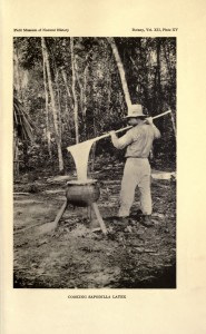 Cuisson du latex de sapodilla au Bélize en 1936. Source: Wikicommons.