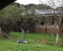Taller de Forestería Análoga con la Moorabool Landcare Network