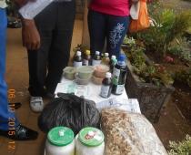 Reunión de empresas sociales en Bamenda, Región Noroeste de Camerún