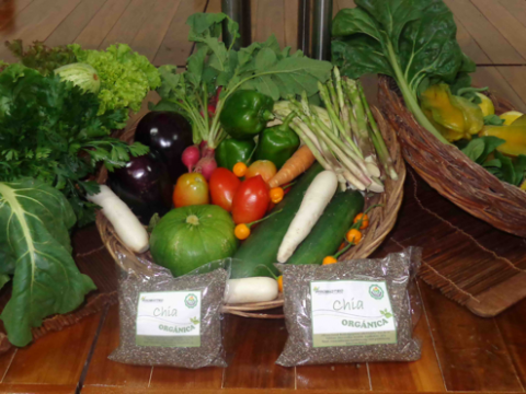 Producers  of Santa Cruz, Bolivia launch an innovative agroecological identity seal