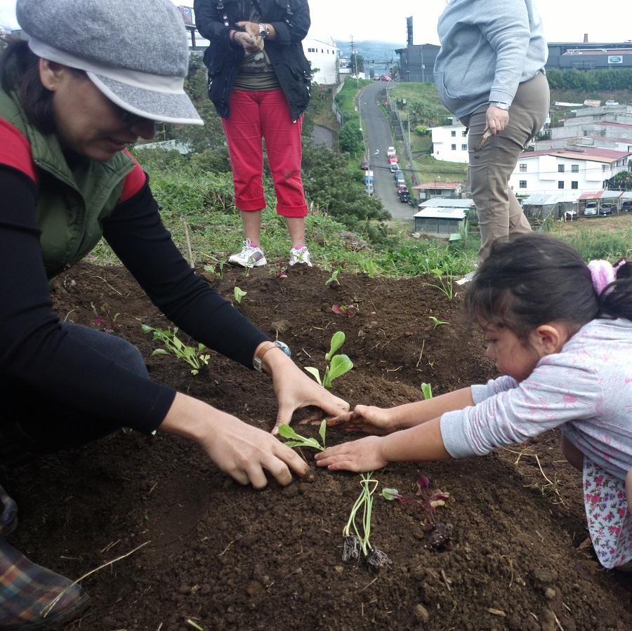 Planting Mandala