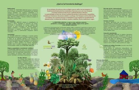 Forestería Análoga Contribuciones (Afiche)